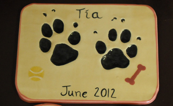Pet paw prints in clay