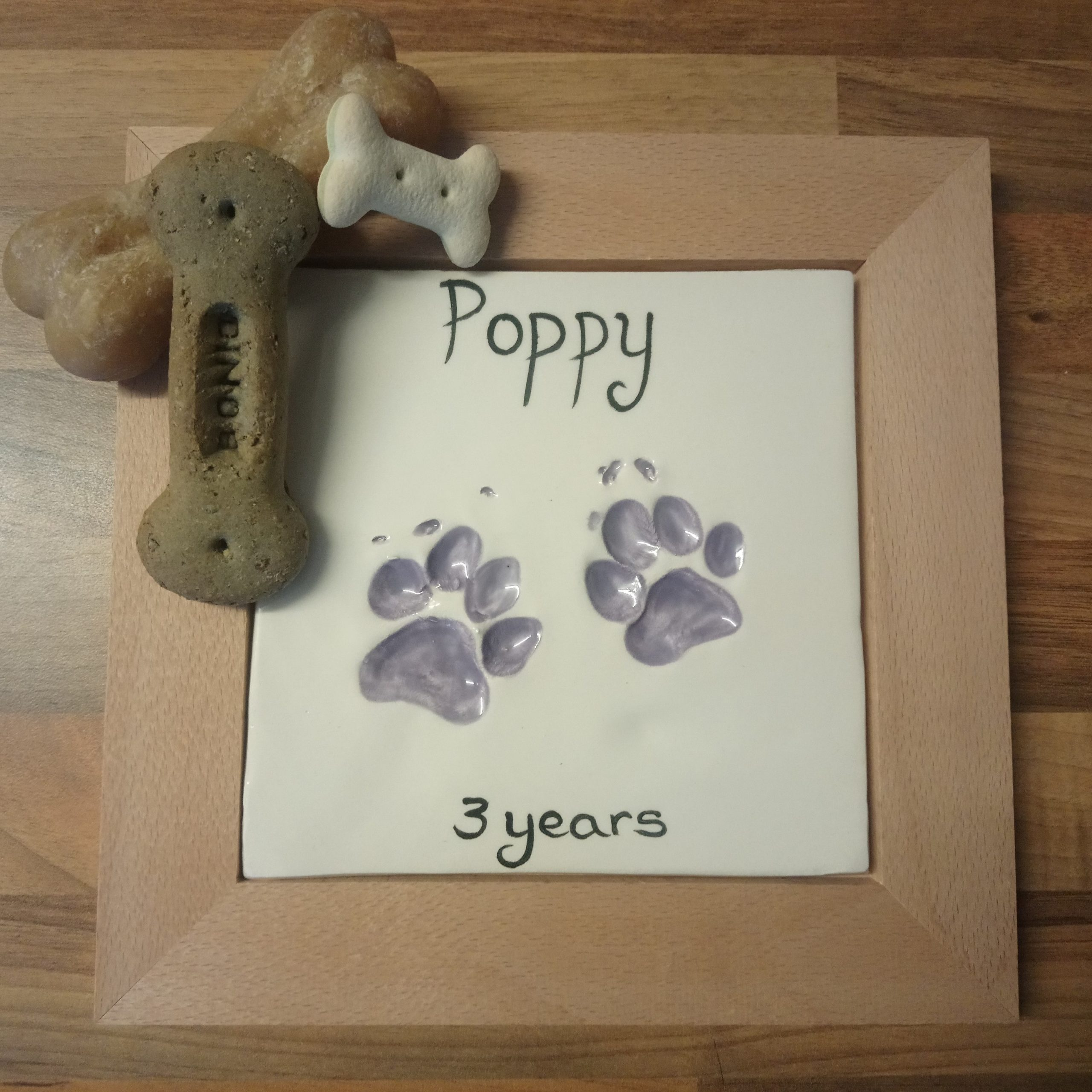 framed dog paw prints in  clay